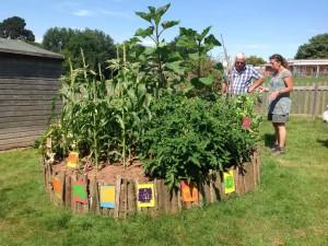 Bassetts Farm School vegetables