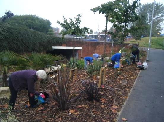 Weeding the 'Triangle' down by the underpass in Marine Way