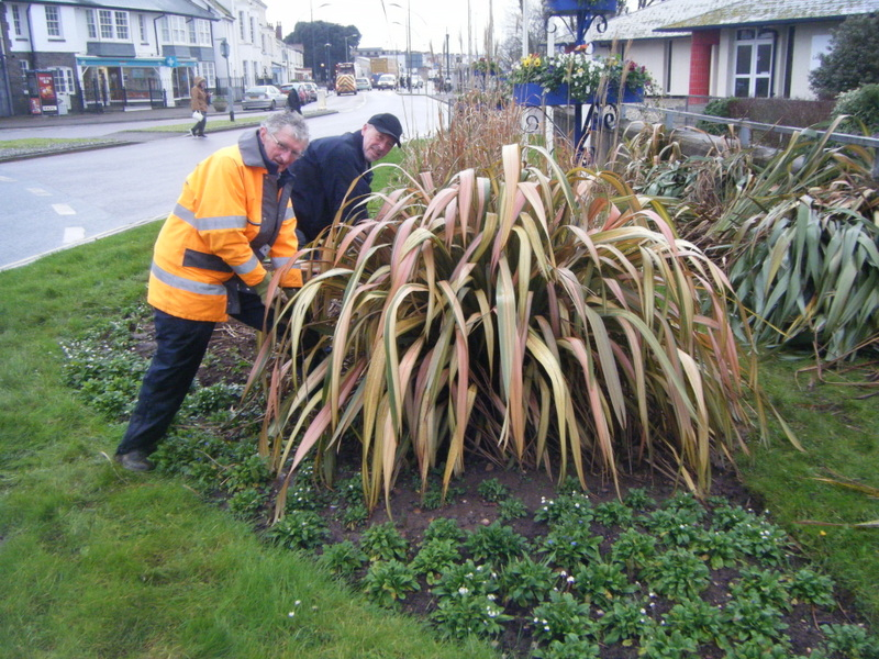 Richard and Brian dig out the phormiums