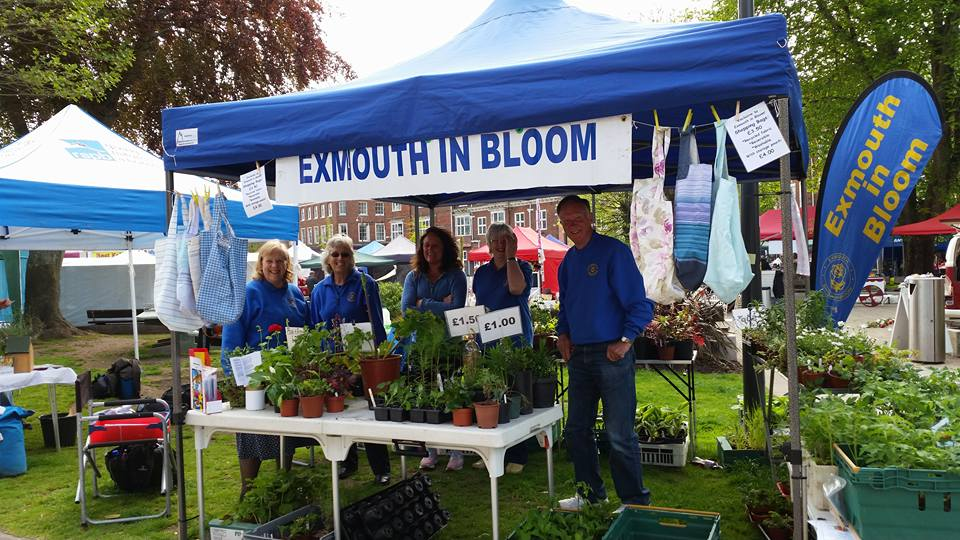 Plant stall at Carnival Spring Fun Day